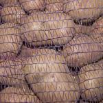 Почему сетка для картофеля является идеальным упаковочным материалом