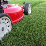 Газонокосилки - что нужно знать при покупке газонокосилки
