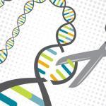 У людей обнаружили иммунитет к редактированию генома