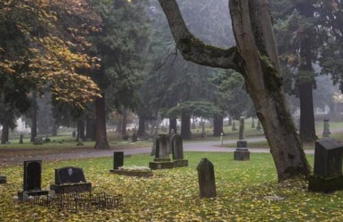 Ритуальные услуги и изготовление памятников в Витебске можно заказать на выгодных условиях