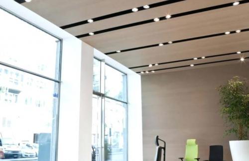 Встраиваемые светильники для дома и офиса: проблема выбора