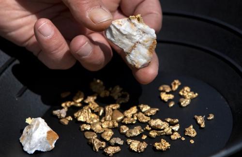 В ЛНР решили добывать золото