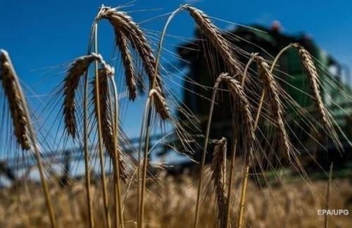 Украина нарастила аграрный экспорт в ЕС на треть
