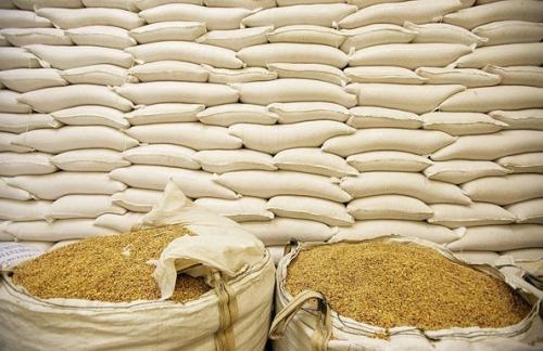 Украина не будет ограничивать экспорт пшеницы