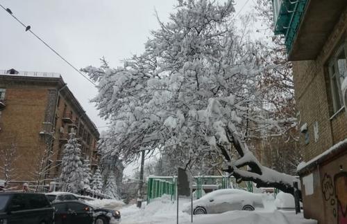 Водителей Киева призвали не оставлять авто на обочинах из-за масштабной уборки и вывоза снега