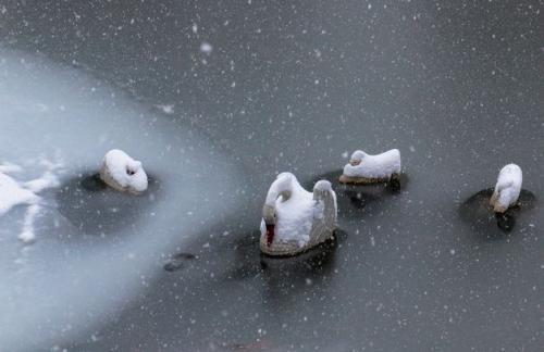 Спасатели предупредили об ухудшении погодных условий в десяти областях Украины