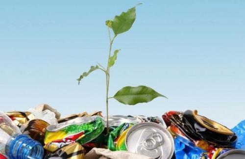 Как правильно сортировать отходы