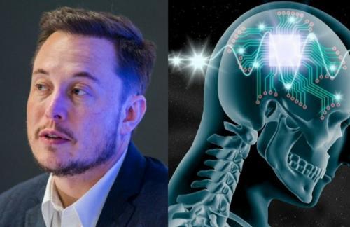 Neuralink Илона Маска строит лабораторию для испытаний на животных