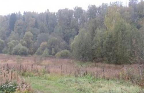 Помощь в покупке земельного участка в Ярославской области