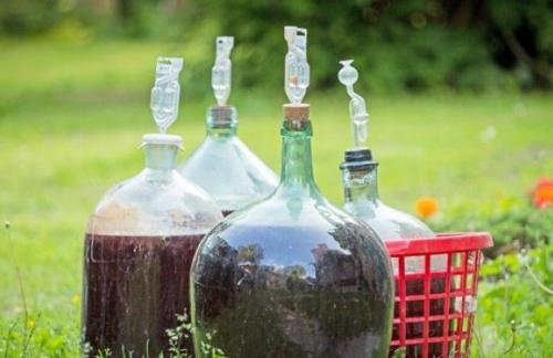 Что необходимо для изготовления домашнего вина?